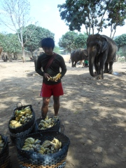 Our guide getting bananas ready